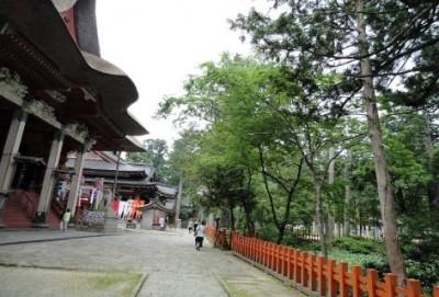 山形県鶴岡市の『出羽三山神社』で神社めぐり観光!!