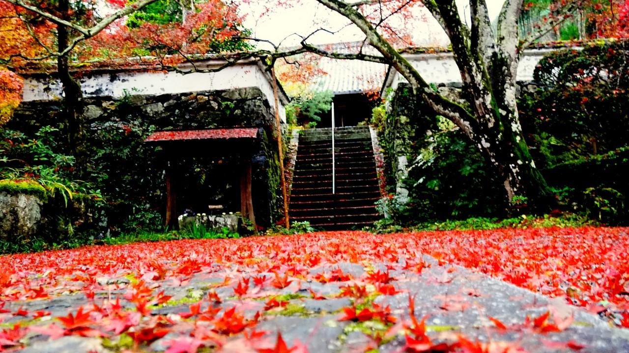 神蔵寺・6