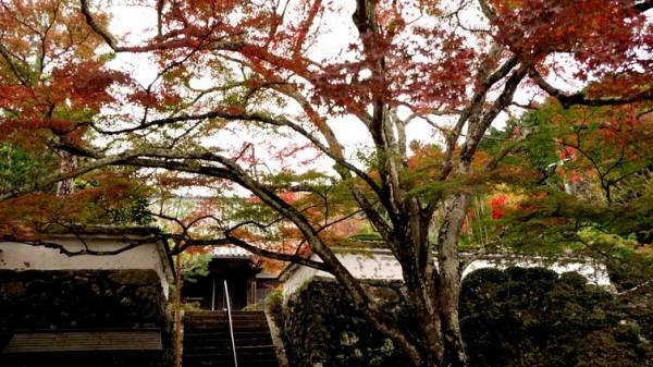 神蔵寺・3