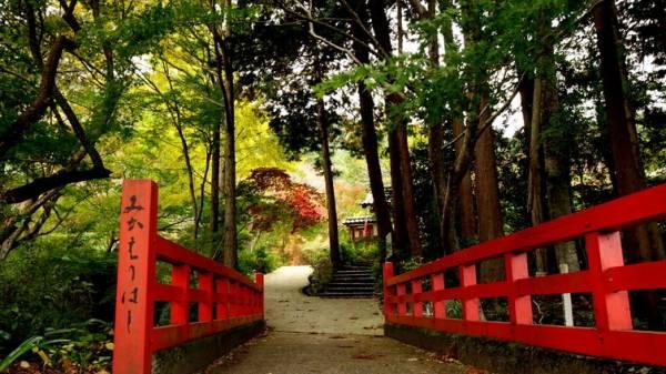 京都の隠れ紅葉スポット『神蔵寺』で紅葉狩り観光!!
