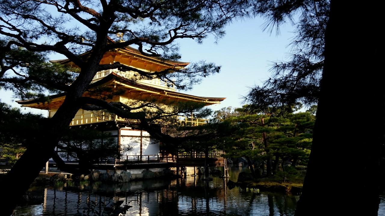 世界一有名なお寺、京都の『金閣寺』で寺めぐり観光!!