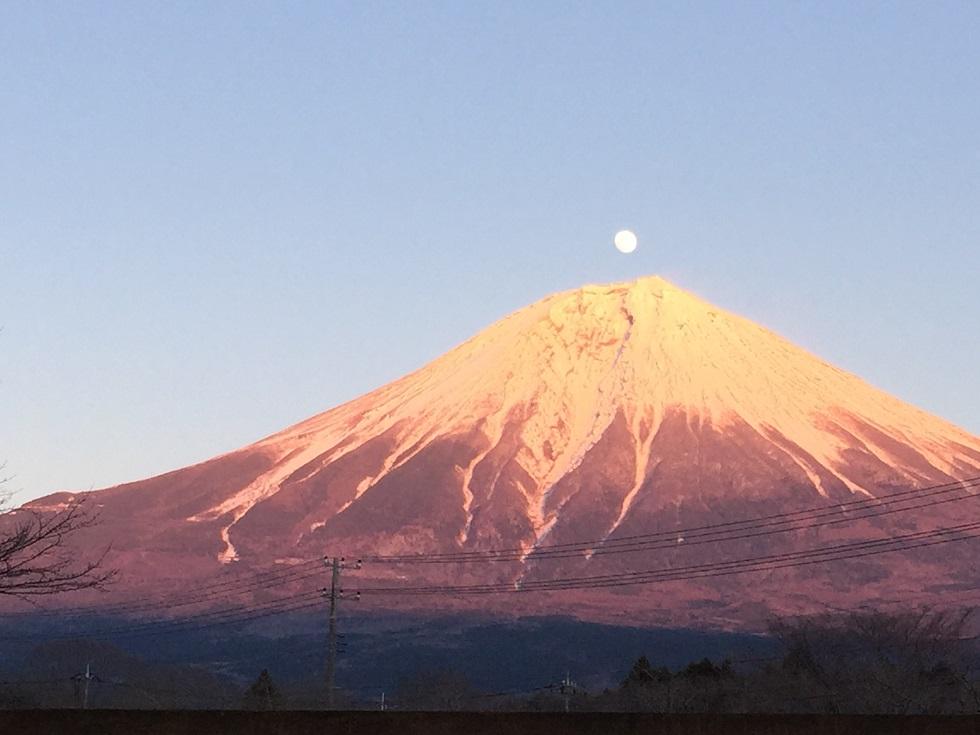 魅力万歳♪気軽に行ける観光地『静岡県』