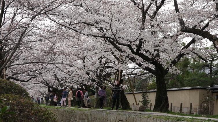 京都市内・1