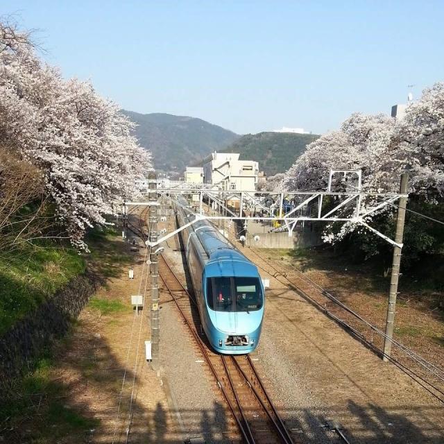 小田急ロマンスカーで『箱根』の名物食べ観光!!