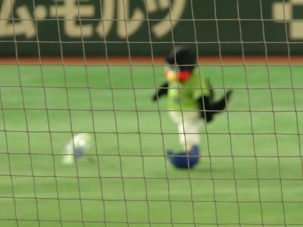 スポーツ撮影 (7)
