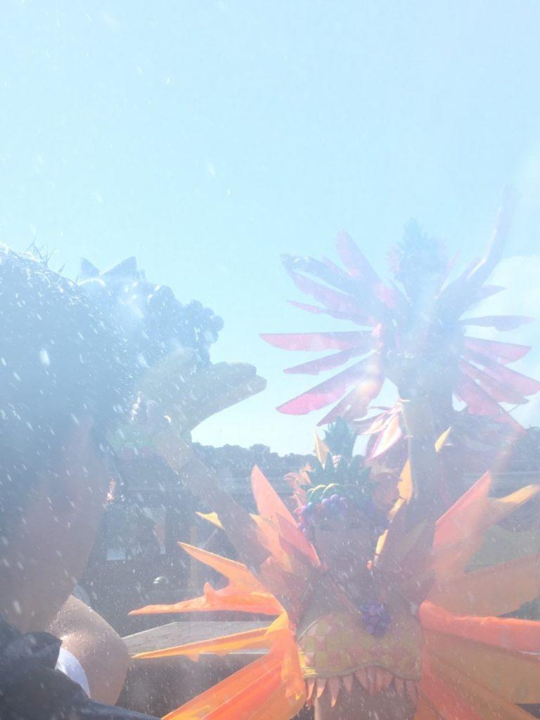 『ディズニーサマーフェスティバル』で夏の思い出を作ろう (8)