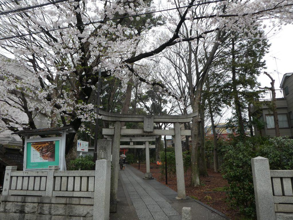 東京都目黒区自由が丘の『自由が丘熊野神社』で4月限定御朱印をいただきました。